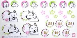 柴犬/梅と桜